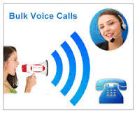 Voice Call Services NoidaServicesBusiness OffersNoidaNoida Sector 2