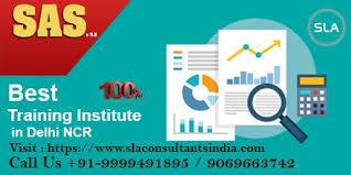 Our SAS Certification Training Institute in Delhi Offers 100% Career Assistance