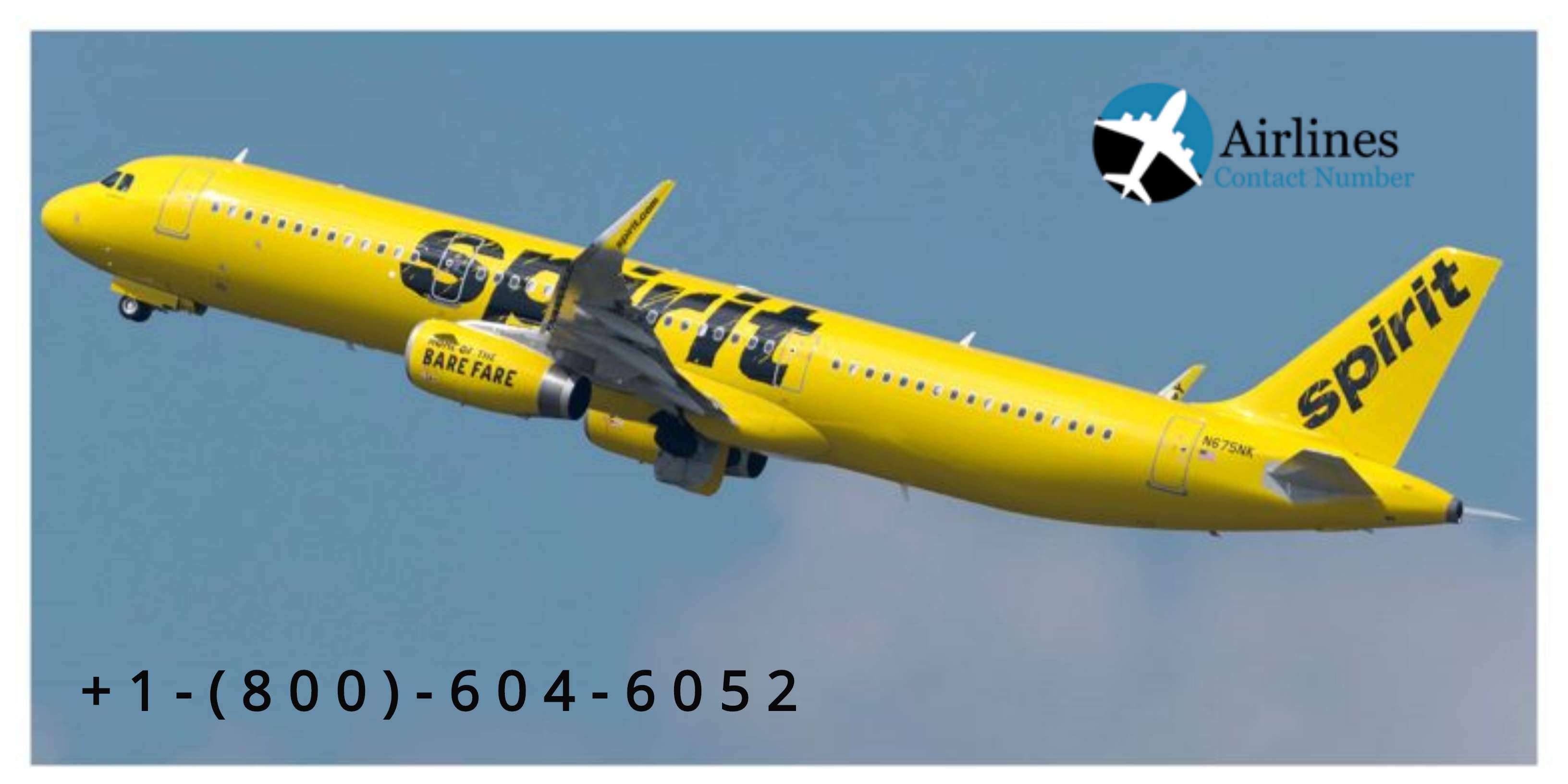 spirit airlines contact numberTour and TravelsTravel AgentsAll Indiaother
