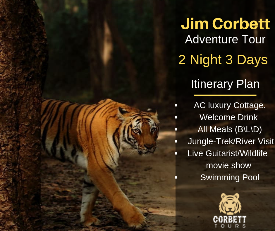 Affordable Tour Packages To Jim CorbettTour and TravelsTour PackagesNoidaHoshiyarpur Village
